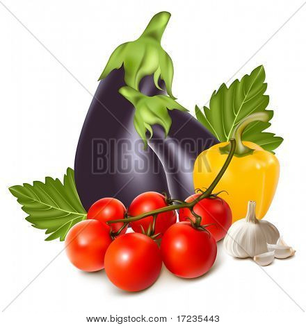 Vector. Colorful fresh group of vegetables