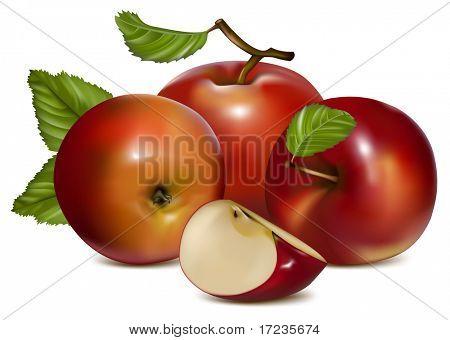 Vector. Manzanas con hojas verdes.