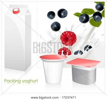 Vector set of blank milk and yoghurt packs. Forest berries falling into the milky splash.
