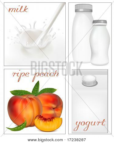 Vector illustration. Elements for design of packing milk dairy. Milky splash. Ripe peaches.