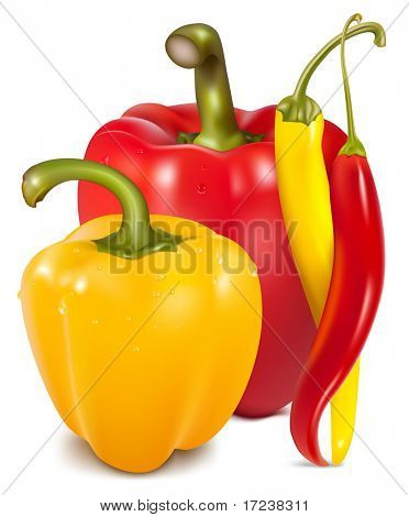 Vector illustration of  ripe colored peppers.