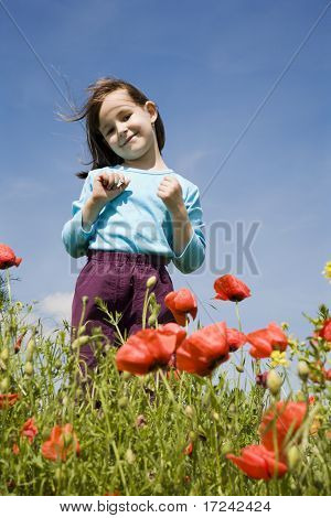 little girl in the corn poppy