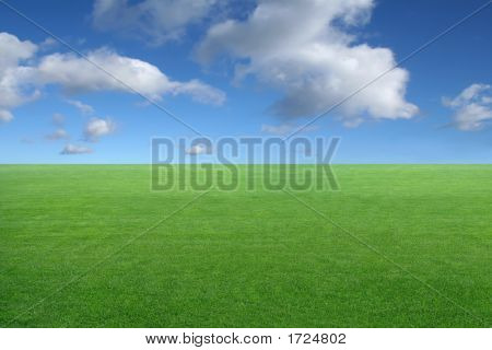 Landscape - Green Grass On Blue Sky Background