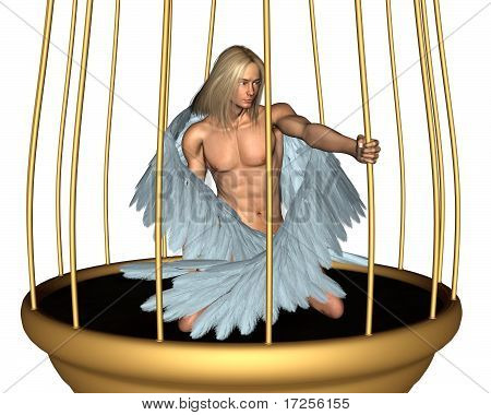 Captive Male Angel in Gold Cage
