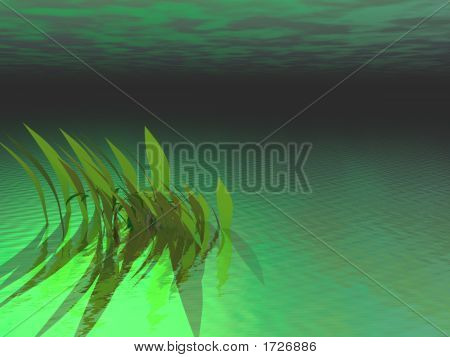 Under The Green Sea