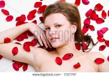 Bed Of Petals