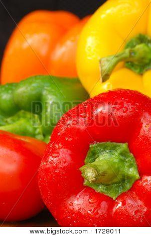 Pepper Medley Close-Up 2