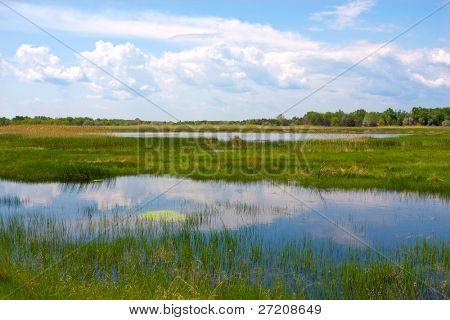 Nice landscape with river flux