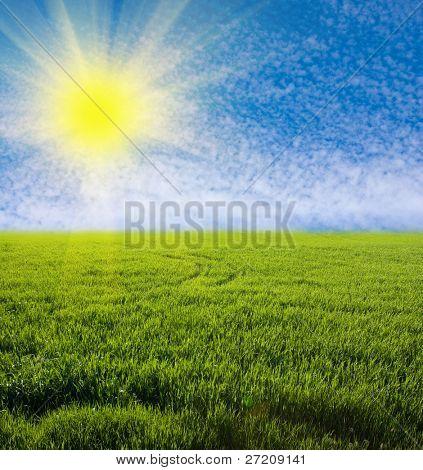 Green grassland with nice sky