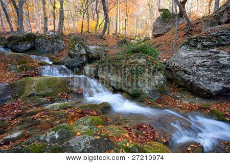 Mountain brook in autumn forest
