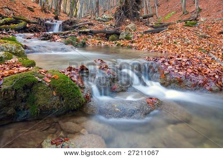 Landscape with brook in autumn forest