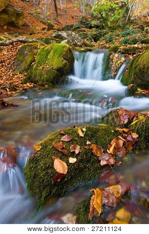 Nice brook in autumn forest