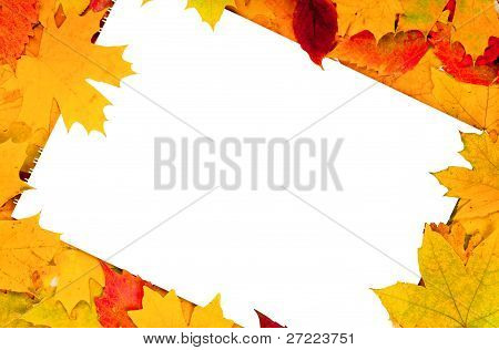 white sheet of paper and autumn leaves