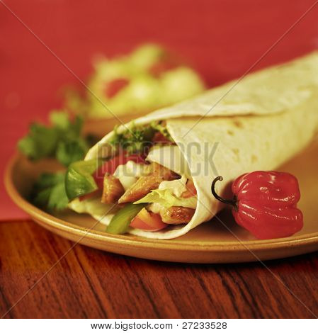 Tortilla Filled with Vegetables and Fajitas