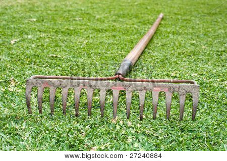 A steel tine rake laying in the grass