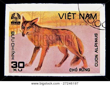 VIETNAM - CIRCA 1980s: A stamp printed in Vietnam shows Cuon Alpinus, series, circa 1980s.