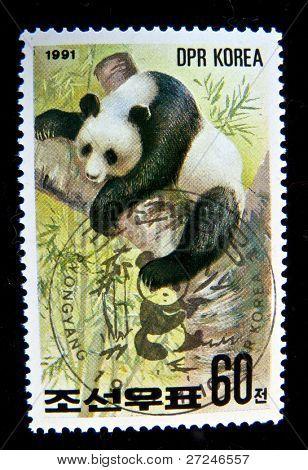 República Popular Democrática de Corea - alrededor de 1991: Un sello imprimido por Corea DPR muestra koala, sello es de la serie, alrededor de 1
