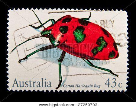 Australien etwa der 1980er Jahre: eine Briefmarke gedruckt in Australien zeigt Käfer Baumwolle Harlekin Bug, etwa der 80er Jahre
