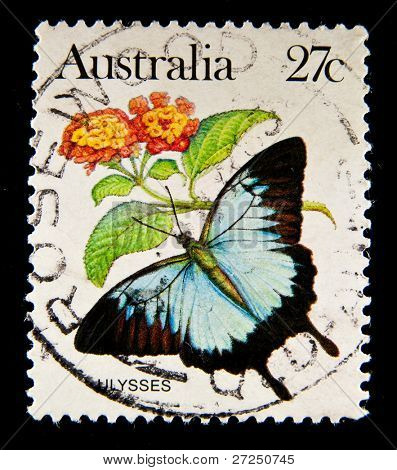 AUSTRALIA - CIRCA 1990ss: stamp printed by Australia, shows butterfly Ulysses, circa 1990s.