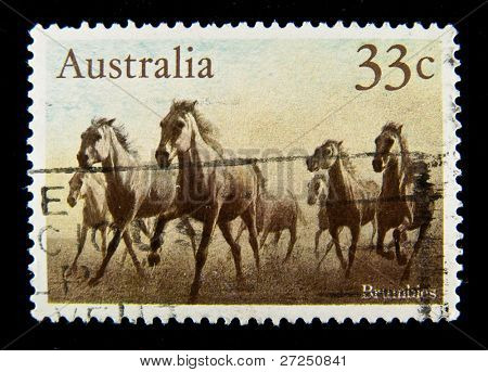 AUSTRALIA - CIRCA 1990s: A stamp printed in Australia shows image of a wild horse, circa 1990s