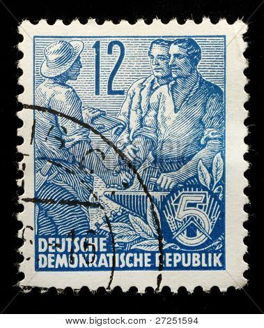 EAST GERMANY - CIRCA 1956: A stamp printed in East Germany shows image of agricultural workers, series, circa 1956