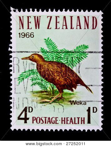NEW ZEALAND - CIRCA 1966: A stamp printed in New Zealand, shows bird Weka, circa 1966.