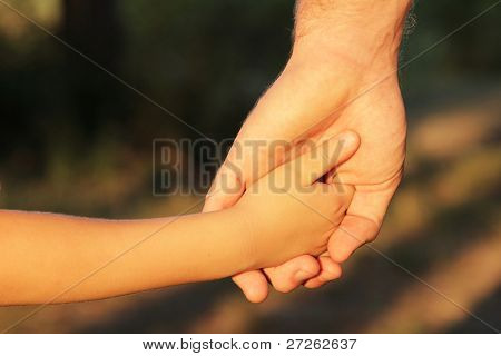 family father and child son hands nature evening summer outdoor