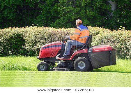 das Bild von den Rasen mähen