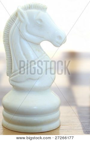 White horse on the chessboard. Focus is under the horse
