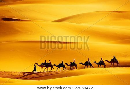 Caravana do deserto