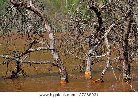 Contaminación del agua de la explotación de minas de cobre o