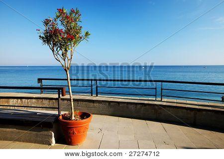 Architectural detail in Monterosso al Mare, Cinque Terre, Italy
