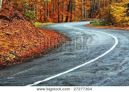 Winding road in autumn