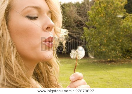 blowing a flower in the park