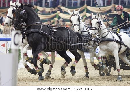 BUDAPEST, HUNGARY - DECEMBER 3: An unidentified competitor driving with his cart at the OTP Equitation World Cup, December 3, 2011 in Budapest, Hungary