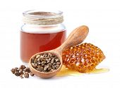 Propolis tincture with honeycomb. Propolis granules. Antiseptic poster
