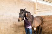 Smiling Rancher Looking At Brown Equine Standing In Stable poster