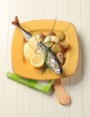 Mackerel with Hollandaise sauce and new potatoes