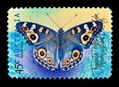 AUSTRALIA - CIRCA 1998 : cancelled Australian postage stamp depicting butterfly meadow argus, circa