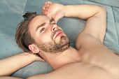 Macho With Beard On Unshaven Face And Sexy Bare Chest Lie On Blue Bed Cover. Desire, Erotic Concept. poster