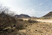 Dirt Road Nearby Spitzkoppe In Namibia, Africa poster
