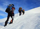 picture of mountain-climber  - Mountain climbers - JPG