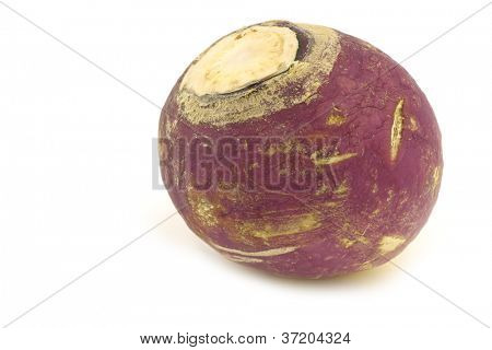 freshly harvested spring turnip (Brassica rapa) on a white background