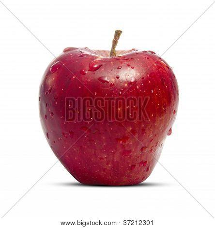 Fresh Wet Apple