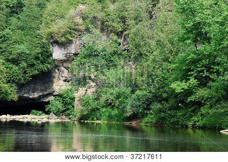 Cliff Of Foliage