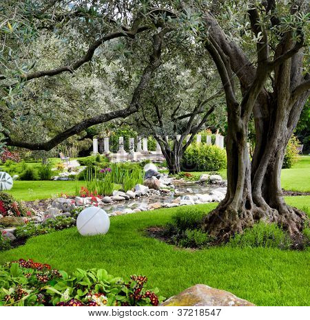 Spring flowers and oliva trees in the Asian garden with a pond