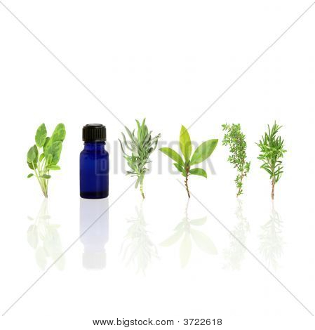 Herb Leaf Purity