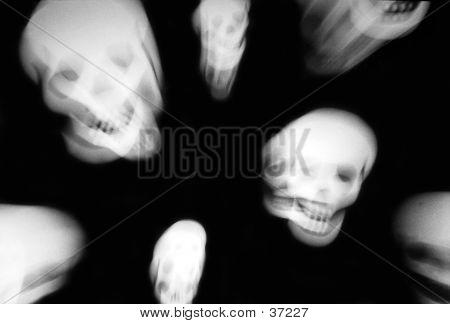 Moving Skulls