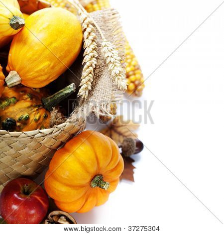 Harvested pumpkins with fall leaves. With copyspace