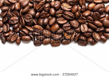 Coffe Stripe